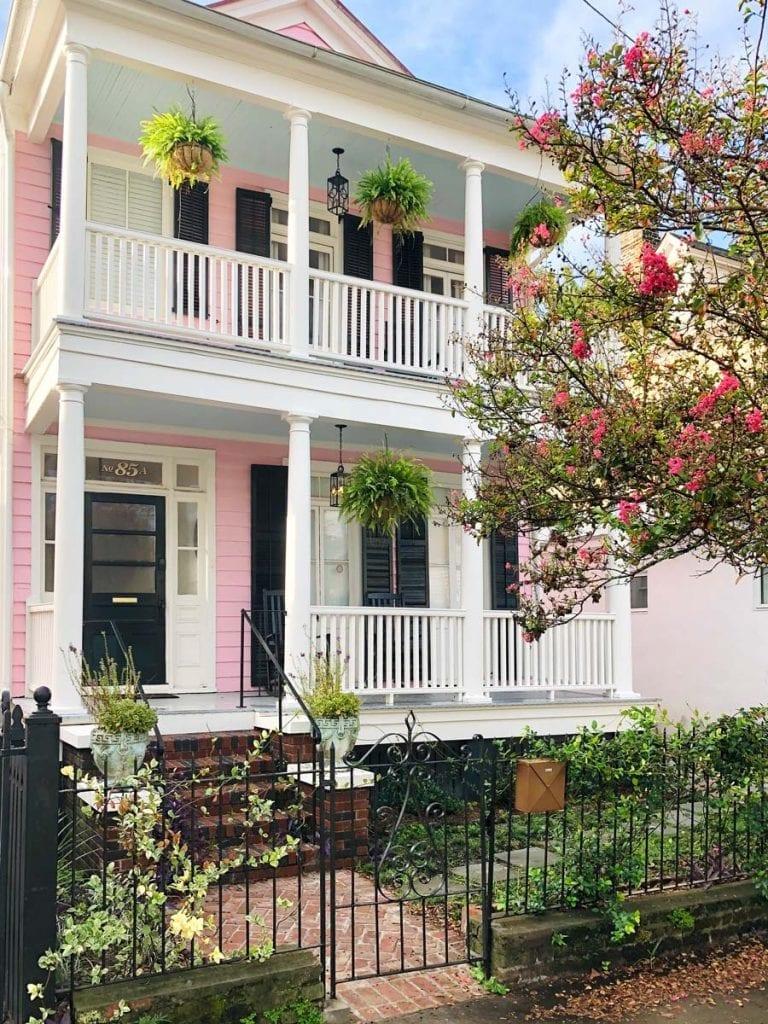 Boho Rosa Charleston SC