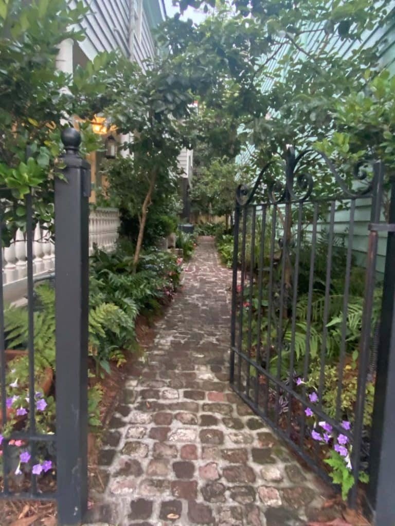 Shot of a walkway in the beautiful city of Charleston.